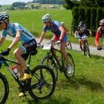 2014_Glebe bike