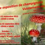 Expo champignons - 2013
