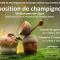 Exposition champignons - Recherche de bénévoles
